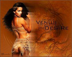 Les 24 – Venus