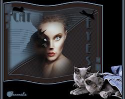 Les 26 - Cat Eyes