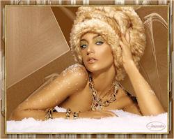 Wintermodel